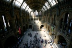 The Natural History Museum (Darwin now in his rightful place at the top of the stairs)